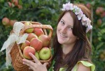 рецепты-яблоки