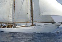 "Mediterranean sail / ""To reach a port we must set sail – Sail, not tie at anchor Sail, not drift.""                                            ― Franklin D. Roosevelt"