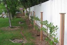 Изгороди и прочие примеры