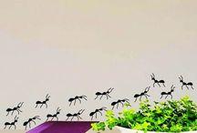 муравьи бабочки