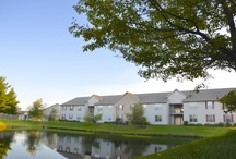 Live at Oak Creek at Polaris / Oak Creek at Polaris is the sister community to Lake Club at Polaris in Lewis Center, Ohio. Oak Creek consists of 268 one and two-bedroom garden-style apartments. Learn more about living at Oak Creek by visiting www.championpm.biz/oakcreek