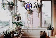 Living Space / A little bohemian, a whole lot of plants.
