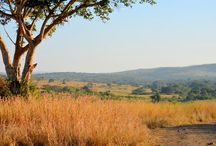 TIA - This Is Africa / My home, my love! Best place on earth, I'll never leave!