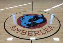 Gym Floor Logos / Logos painted on gym floors / Basketball courts