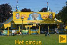 School - circus