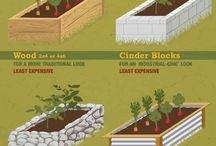 Gardening - Raised Beds