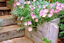 yard and garden / by Deanne Heaton