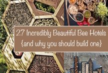 Bee & Insect Hotels