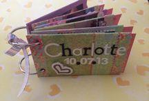 Brag book  / Mini scrapbook made from toilet rolls