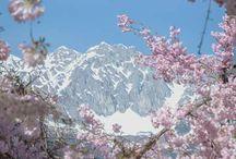 Innsbruck und Kuhtai
