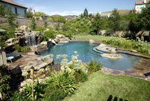 Natural and Freeform Pools!