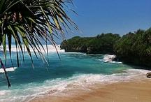 Természet Bali