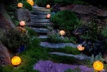 garden / by Liv Perschon