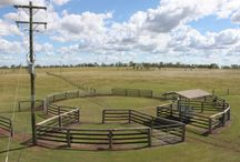 Horse stables and horse facilities