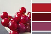 harmonie couleur