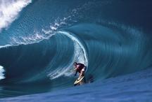 beaches nature surfing