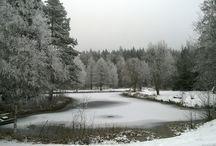Winter Vrigstad Älgpar