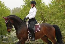 Mattes saddle pads