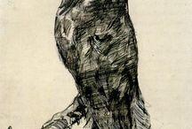 Owl Watcher