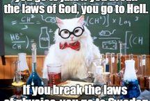 physics ml