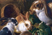 Aℜ✞ ❀⊱Animals, Forest Critters⊰❀
