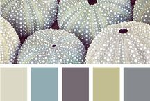 Beautiful color palettes / by Colleen Scott
