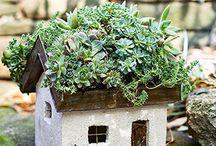 Fairy House etc