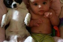 Kids and their pets / Just some cuties