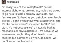 Feminist and Funny Shit