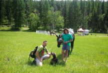 Lumby CTR 2013 / A CTR that occured in Lumby, BC in 2013.  Great ride and great venue!