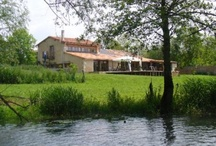 Vienne properties / Houses for sale in the Vienne, France