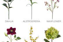 Tên các loại hoa