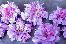 Kvety a mašle