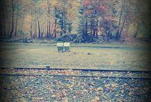 le automne