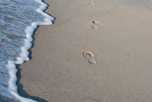 Thema: 'Zon, zee en strand'. / Het ultieme zomergevoel!