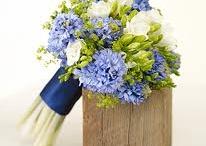 c&e wedding ideas / by Stephanie Clarke