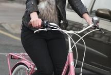 Bikes / Which bike shall I choose?