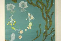 1r-2n-ESO-Plantes i algues