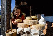 Malga che vai, formaggio che trovi: un'estate tra gli alpeggi in Carnia tra escursioni, trekking e feste