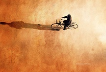 Bikes - Bicycles - Bicycling - Cycle Chic