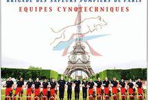 Equipes Cynotechniques Pompiers de Paris / Images du groupe cynotechnique et risques animaliers de la Brigade de Sapeurs Pompiers de Paris. Search and Rescue K9 Unit Paris Fire Brigade (France)