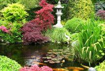 Les jardins de MonEden