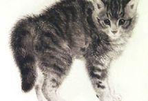 Peintre (Kurt Meyer-Eberhardt) / Animalier