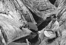 Shaolin Monks / This is what it takes to be a Shaolin Monk. It takes years to train the mind and body.