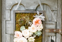 decorative ideas / by Chelsea Knoch