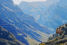 Western Cape Landscape Paintings / A selection of Western Cape landscape paintings by South African artist Andrew Cooper.