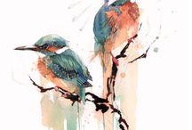Ink | Watercolour | Creature
