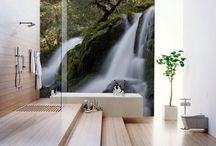 Photo Wallpaper / photo wallpaper