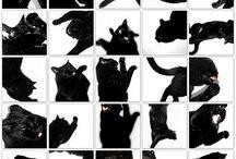 Animales / Mascotas, animales, gatos, perros, etc