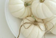 Fall Decor / by Apples & Onions